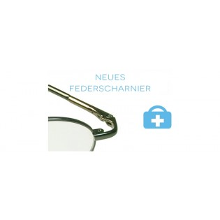 neues Federscharnier - Metallbrille