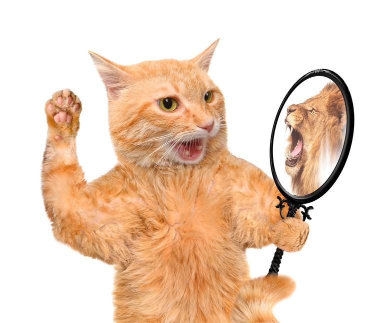 Wie funktionieren entspiegelte Brillengläser?